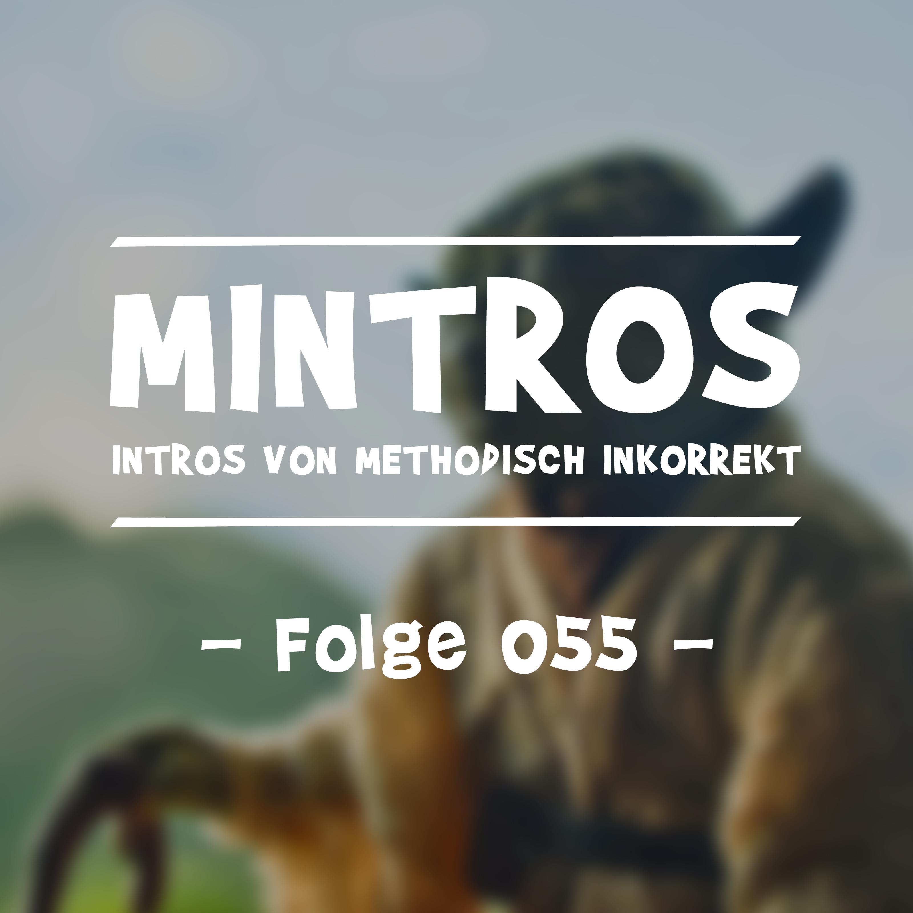 MII055 Der dunkle Pfad
